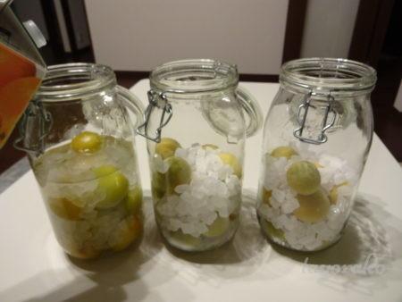 梅と氷砂糖を交互に瓶へ