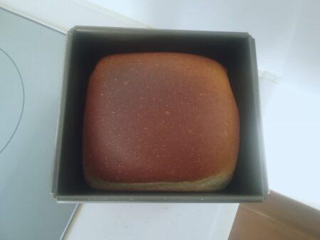 ヤクルト食パン焼き上がり
